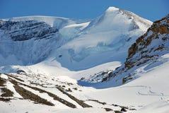 Snowberg royaltyfri fotografi