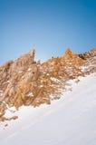 Snowbird 6 images stock