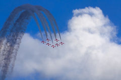 Snowbirds Stock Photo