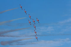 Snowbirds immagine stock