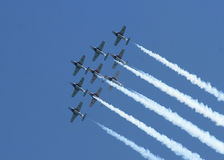 Snowbirds photo stock