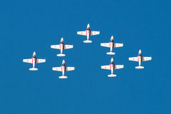 Snowbirds 017 Fotografia de Stock Royalty Free