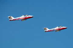Snowbirds 014 Fotografia Stock