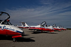 Snowbirds atterrati immagini stock