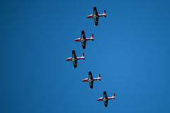 Snowbirds Demonstration Team in Formation Stock Image