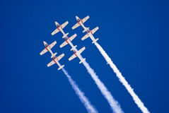 Snowbirds in Flight Stock Images