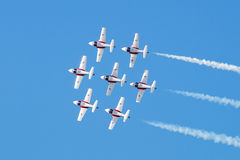 Snowbirds 013 Royalty Free Stock Image