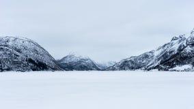 Snowblind em Noruega fotos de stock