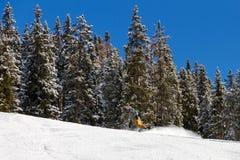 Snowboard Immagini Stock Libere da Diritti
