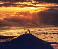 Snowboard Stock Fotografie