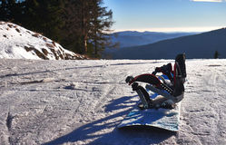 snowboard Royaltyfri Foto