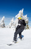 Snowboard beginner. On a snow slope riding his snowboard royalty free stock image