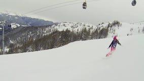 Snowboard de las vacaciones metrajes
