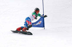 Snowboard European Cup Stock Photography