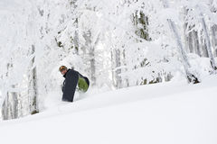 Snowboard Forest Winter Freeride Stock Photo