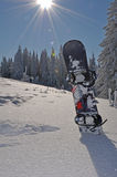 Snowboard in mountains. A snowboard stuck into thick snow with fir trees behind it Royalty Free Stock Image