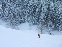Snowboard nella neve della polvere Fotografie Stock Libere da Diritti