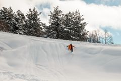 Snowboard rider descending down the snow slope. On the background of trees and cloudy sky Stock Image