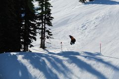 Snowboard-springender Pfeifer BC Kanada stockfoto