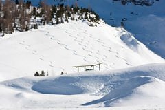 Snowboard tracks in alps forest landscape Stock Photo