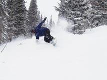 Snowboarder в снежном лесе Стоковые Фото