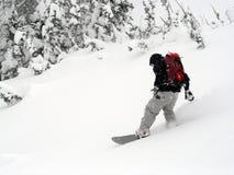 Snowboarder. Enjoys fresh powder at snowbird ski and summer resort Royalty Free Stock Photo