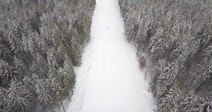 Snowboarder auf der schwarzen Bahn in den Bergen auf dem Schneeerholungsort Vogelperspektive des Straße lanscape stock video
