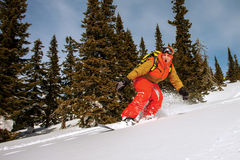 Snowboarder doing a toe side carve Royalty Free Stock Photos