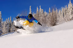 Snowboarder doing a toe side carve with deep blue sky in backgro Royalty Free Stock Photo