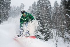 Snowboarder in forest jumping creating snow splashes. Snowboarder in the forest jumping creating snow splashes Royalty Free Stock Image