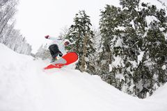 Snowboarder on fresh deep snow Stock Photo
