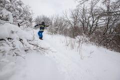 Snowboarder jedzie szybko wśród nakrywających krzaków i drzew Obrazy Royalty Free