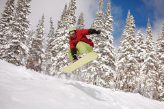 Snowboarder jumping Stock Image