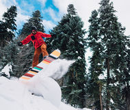 Snowboarder is jumping and freeriding in the mountain forest. Snowboarder with special equipment is jumping very high and freeriding from snowdrift, hill in the Royalty Free Stock Images
