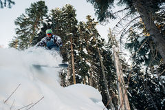 Snowboarder is jumping and freeriding with snowboard. Snowboarder is jumping and freeriding in the mountain forest Royalty Free Stock Images