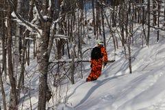 Snowboarder no equipamento alaranjado da camuflagem que desliza na neve fresca do pó na floresta fotos de stock
