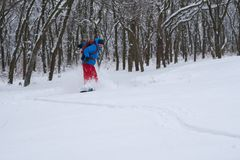 Snowboarder is riding in a deep snow, along the forest slope Stock Image