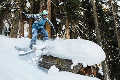 Snowboarder is riding and freeriding in mountain forest. Snowboarder is riding and freeriding in the mountain forest Royalty Free Stock Images
