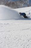 Snowboarder ripping into the fresh snow Royalty Free Stock Image
