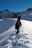 Snowboarder in salita per il freeride Immagine Stock
