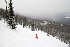 A snowboarder on the slope covered snow on a background of winter forest and mountains. Stock Photos