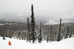 A snowboarder on the slope covered snow on a background of winter forest and mountains. Royalty Free Stock Image