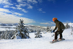 Snowboarder on the slope rises up. Against the backdrop of snow-covered trees Royalty Free Stock Images