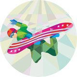 Snowboarder Snowboard Jumping Low Polygon. Low polygon style illustration of a snowboarder snowboarding spin jumping on snowboard set inside circle Royalty Free Stock Photo