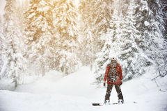Snowboarder stands snow frozen forest backcountry Stock Photo