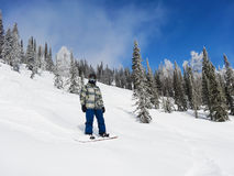 A snowboarder stands on a steep hillside Royalty Free Stock Photography