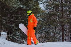Snowboarder walking through the forest. Snowboarder dressed in orange suit walking through the forest royalty free stock image