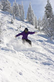 Snowboarder in Winter Terrain. A snowboarder is riding on a steep slope in powder snow Stock Images