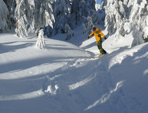Snowboarder in yellow Royalty Free Stock Photo