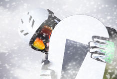 Snowboarderporträt Stockbild